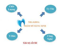 Gia-tri-cot-loi-Nha-Khoa-Chau-Thanh-353igg9bny7yjg82bgy9ds.jpg